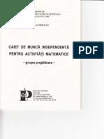 109067436-Caiet-de-Munca-Independenta-pt-activitatile-matematice-grupa-Pregatitoare.pdf