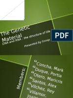 The Genetic Material Group 1 Report