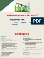 Presentacion Petroleo y Medio Ambiente