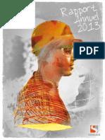 rapprort sonasid 2013