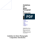 Guidelines for Better Photographic Composition