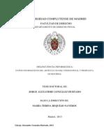 DELITOS INFORMATICOS MMT34976.pdf