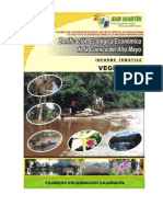 Vegetacion_2007