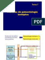T7 Pt Isotopos