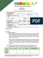 6 Formato Del Informe Final de Toe 2013