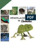 Recopilación de Animales 1 (1)