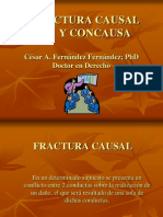Fractura Causal y Concausa