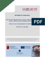 SAE_Informe de viabilidad_Ejemplo.pdf