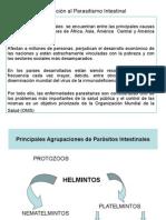 Parasitismo protozoarios
