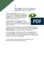 árbol genealógico.doc