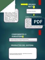 Sistema de Programacion de Operaciones