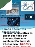Neurociencia de Lo Molecular a Lo Cognitivo1 (1)