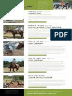 David-Stuart- Aust 2016 Courses