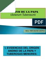 Cultivo de La Papa