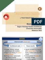 Histologis Hidung_Biomedik III