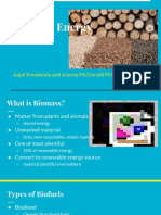 energy source presentation - biomass