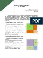 13-FloreaAdrian-Aplicatii Ale Geometriei in Algebra