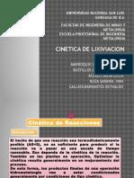 Exposicion de Cinetica de Lixiviacion