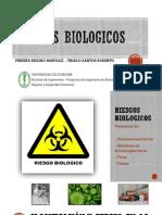 Riesgos biologicos_Expo.pdf