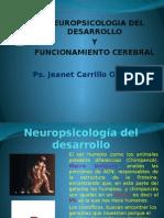 2da Tutoría Neuropsicología (2) (1)