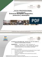 servicio profesional docente (diagnóstico y desempeño)