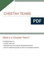 Cheetah Teams Definition