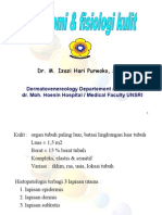 IT 11 - Anatomi & Fisiologi Kulit - IZZ