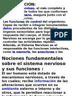 Clase 2 Sistema Nervioso Central Curso Tecnicos en esterilizacion