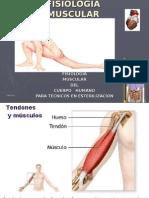 Clase 3 Fisiología Muscular Humana Curso de Tecnicos en Esterilizacion