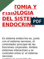 Clase 5 Sistema Endocrino. Curso de Tecnicos en Esterilizacion
