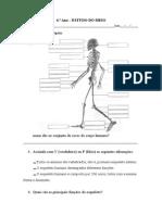 4. ano esqueleto e musculos.docx