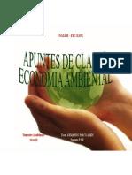Apuntes de Clase Economía Ambiental 2014-II-PDF