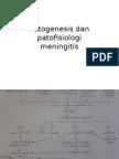 Patogenesis Dan Patofisiologi MENINGITIS