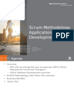 Scrum Overview for Kingfisher