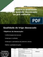 APRESENTAÇÃO COPROSSEL trgo dessecado.pptx