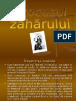 Proce Sul Zaharul u i Pentru Didactic