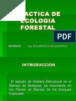 indice de valor de importancia de un bosque