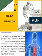 Anatomia y Fisiologa de La Columna Vertebral