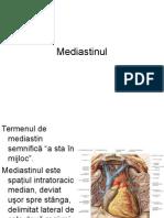 FILE101_Mediastinul.PPT