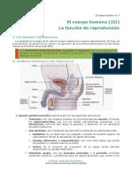 09-Cuerpo Humano III Funcion de Reproducción Humana Para 2do Año