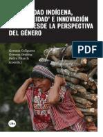 Modernidad indígena, indigeneidad e innovación social desde la perspectiva del género.