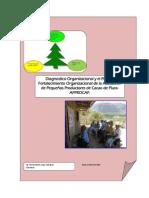 diagnostico organizacional 3