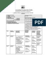 Programa e Structuras AceRoii