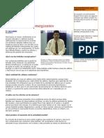 INFO DE BEBIDAS ENERGIZANTES.docx