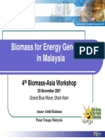 Biomass Energy Generation by PTM
