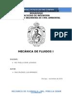 Informe Perdidas Locales - Luis Armando Cabezon Pais