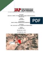 INFORME DE CAMPO GEOLOGIA.docx
