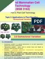 Lecture 3 - Plant (Risha)