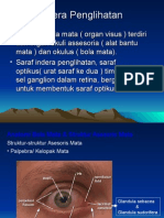 Fisiologi Sistem Penginderaan