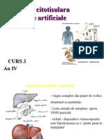 Curs3-Inginerie Citotisulara (1)
